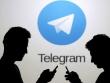 Государство в логическом тупике. Почему власти прекратили делать вид, что Telegram в России «заблокирован»?
