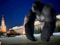 В тюремных издевательствах над Навальным «Кремлёвская обезьяна» победила «Кремлёвского человека»